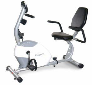 Velocity Exercise Recumbent Bike